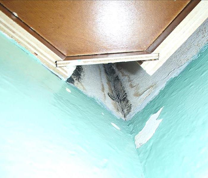 Mold Found Behind Kitchen Cabinets In Huntington Beach Condo After