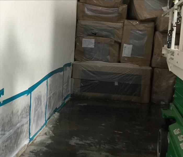 warehouse with mold growth