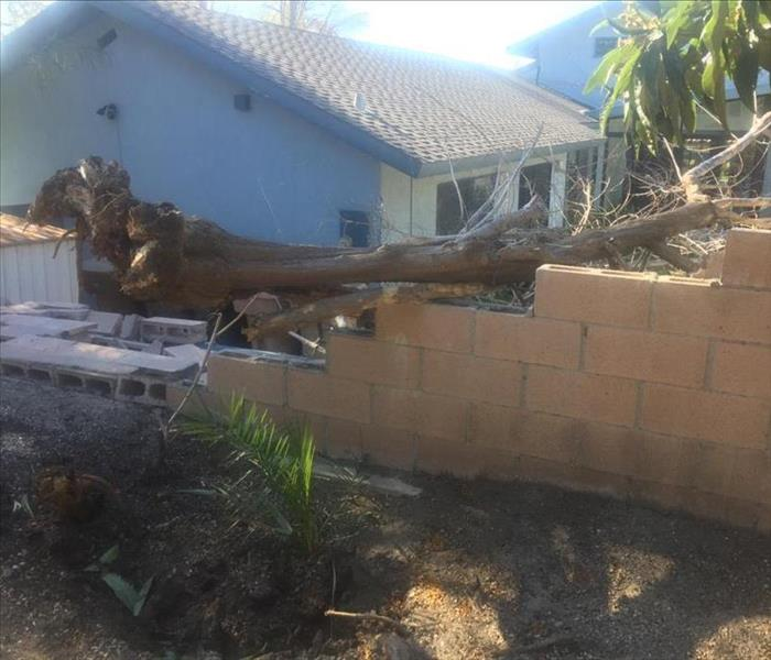 Storm Damage Wind damage? Call SERVPRO of Tustin!