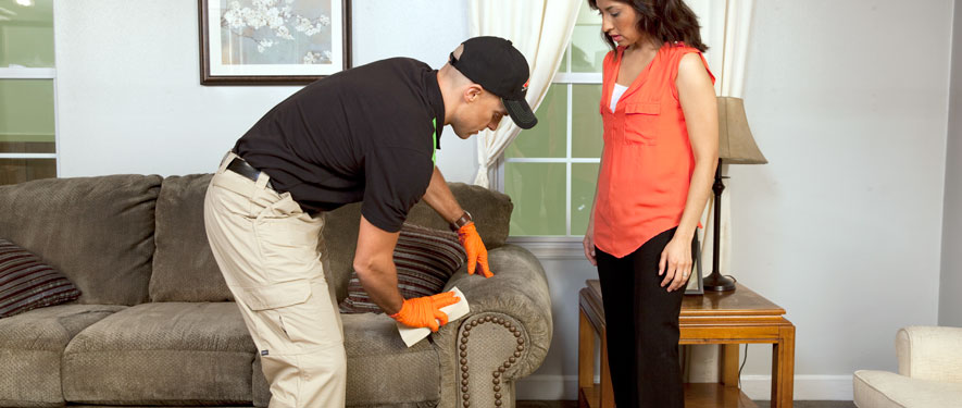 Tustin, CA carpet upholstery cleaning