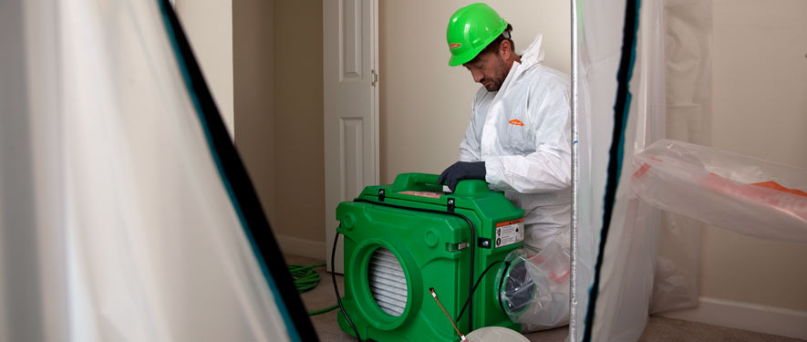Tustin, CA mold cleanup